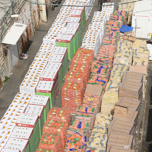 Pesach distribution